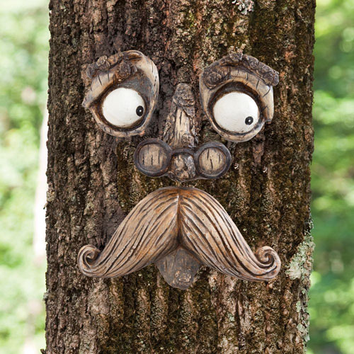 Old Man Tree Face Tree Hugger