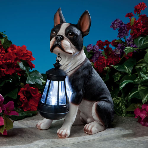 Boston Terrier Solar Lantern Garden Sculpture