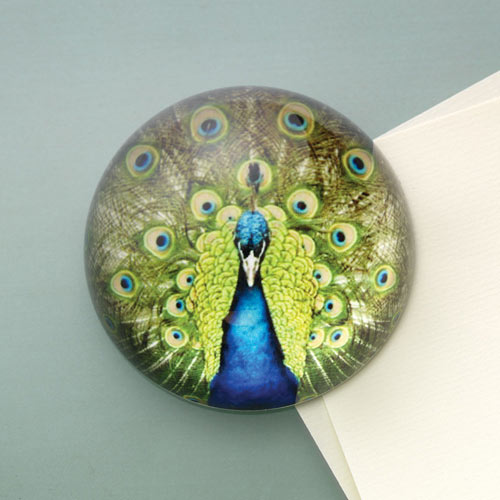 Peacock Glass Paperweight