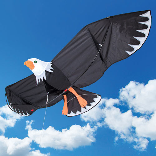Giant Bald Eagle Kite