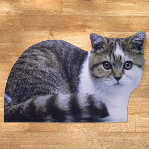 Grey Cat Mat