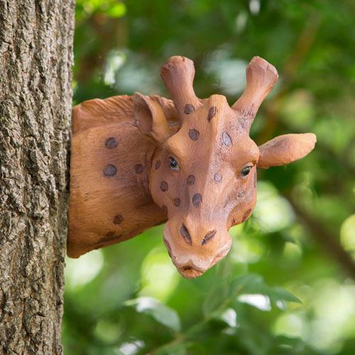 Giraffe Tree Hugger