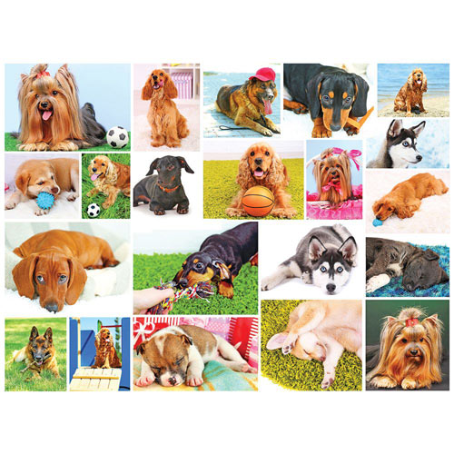 Dogs 1000 Piece Jigsaw Puzzle