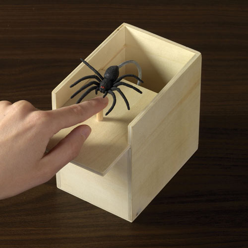Spider Surprise Secret Money Box