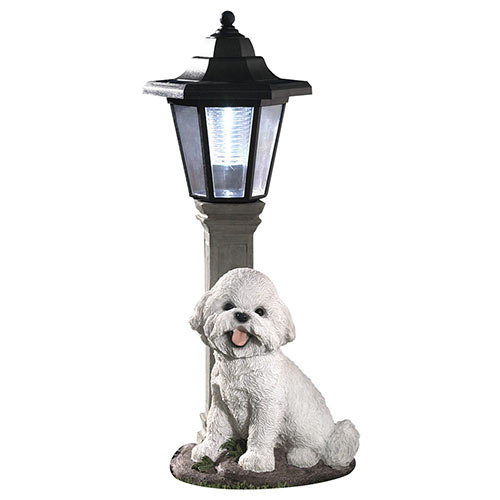 Solar Bichon Lantern