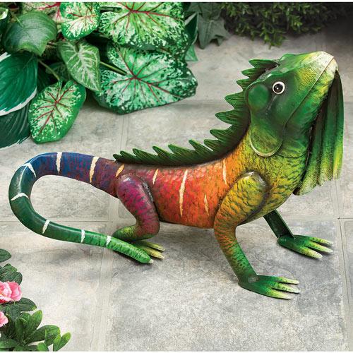 Kiwi the Tropical Iguana