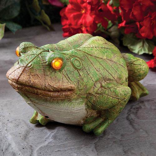 Frog Motion Sensor