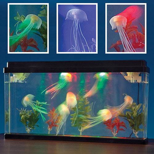 Ocean World Jellyfish Tank