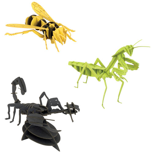 Set of 3: Dimensional Bug Puzzles