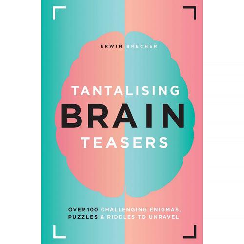 Tantalizing Brain Teasers Book