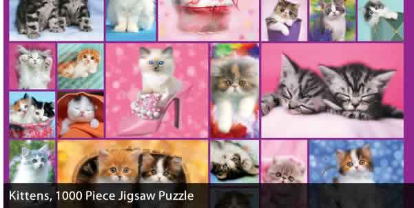 KITTENS 1000 PIECE JIGSAW PUZZLE