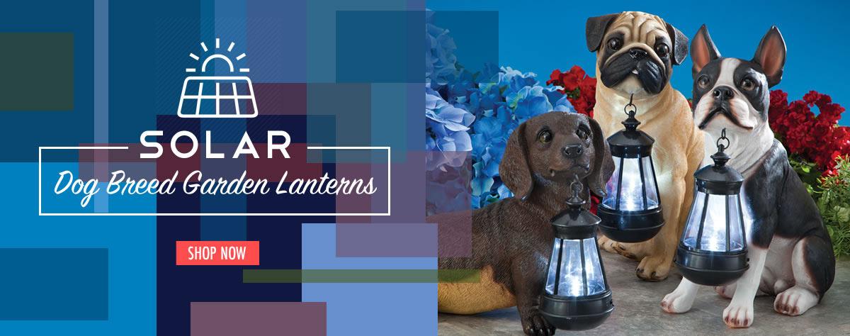 Boston Terrier Solar Lantern Garden Sculpture