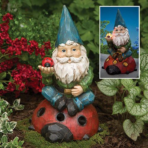 Solar Gnome and Ladybug