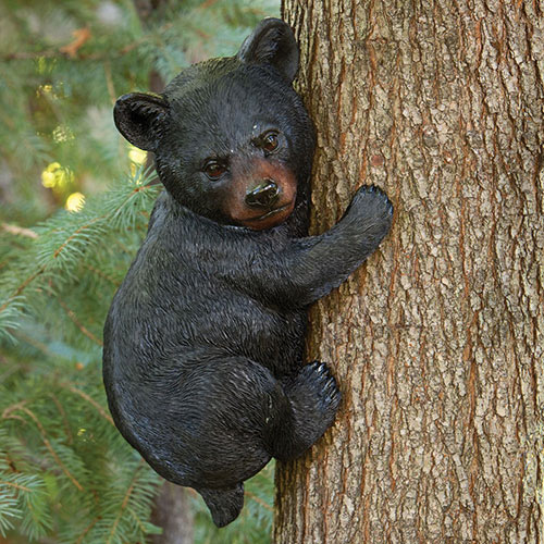 Bear Cub up a Tree