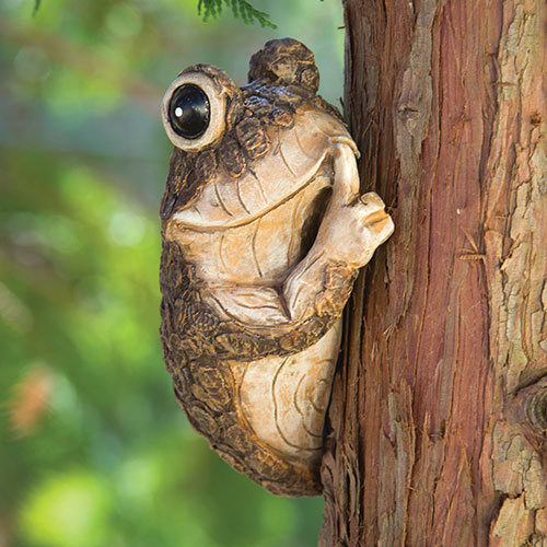 Keep Quiet Frog on a Tree
