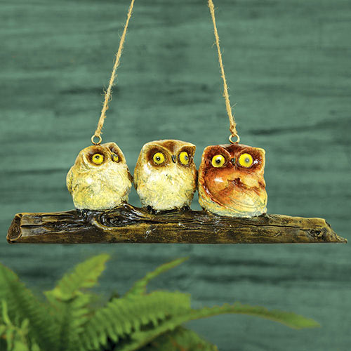 Wise Little Owls