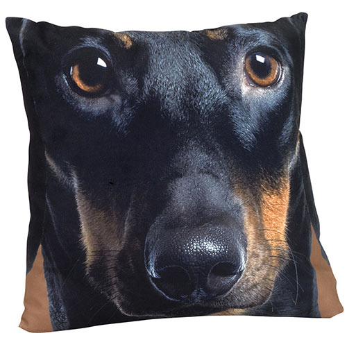 Dog Face Pillow - Dachshund