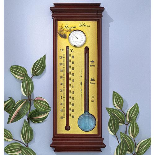 Storm Center Plaque Weather Instrument