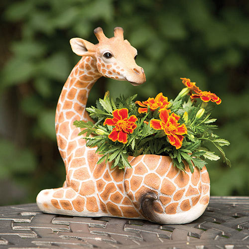 Safari Giraffe Planter