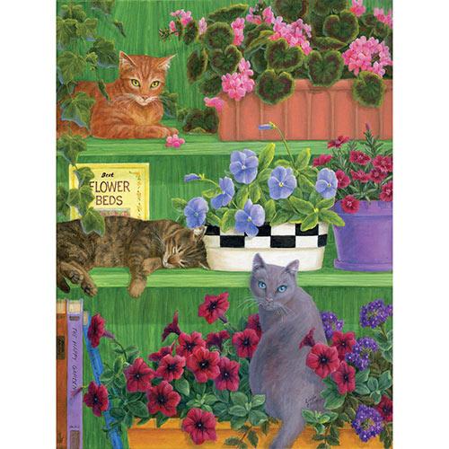 Bookshelf Mischief 1000 Piece Jigsaw Puzzle