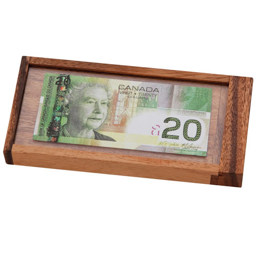 Currency Vault Money Holder