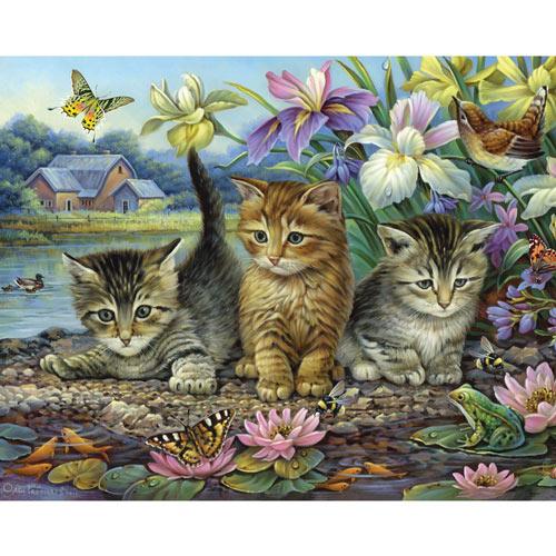 Curious Kittens 1000 Piece Jigsaw Puzzle