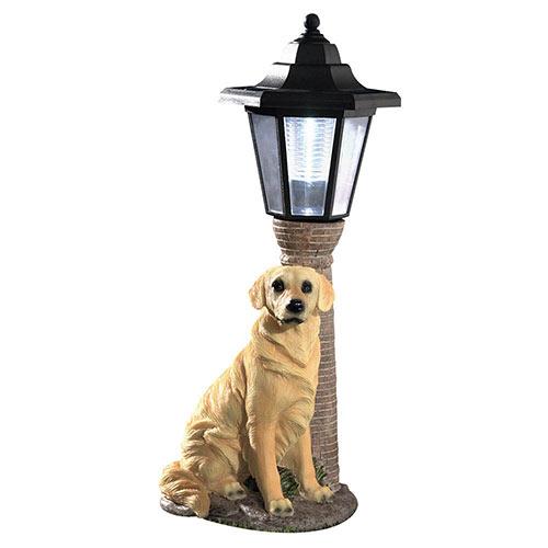 Solar Golden Retriever Lantern