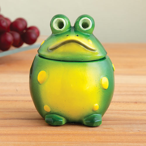 Freddy The Frog Fruit Fly Catcher