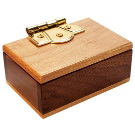 Mini Secret Box Brainteaser