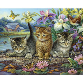 Curious Kittens 1000 Piece Jigsaw Puzzle