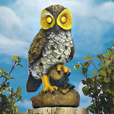 Motion Activated Electronic Garden Owl