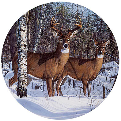 Whitetail 1000 Piece Round Jigsaw Puzzle