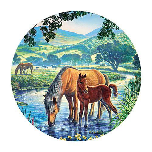 Fell Pony 300 Large Piece Round Jigsaw Puzzle