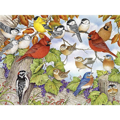 Little Birds 300 Large Piece Jigsaw Puzzle
