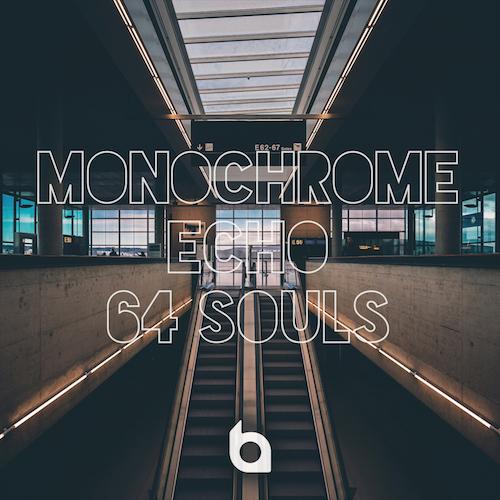 Monochrome Echo: 64 Souls