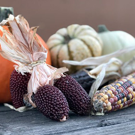 Decorate for Fall with Dried Corn