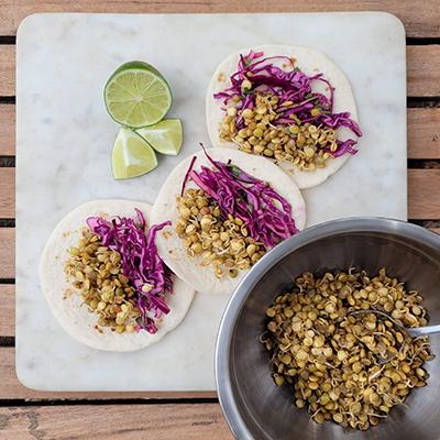 Lentil Sprout Tacos