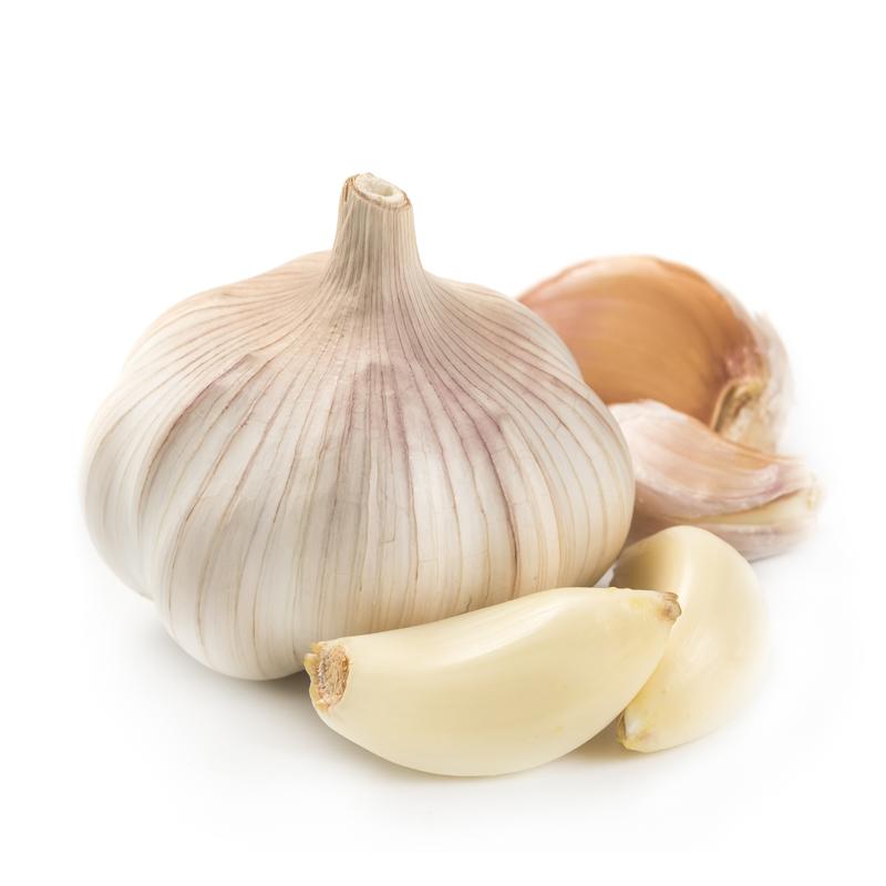 California Early Softneck Garlic