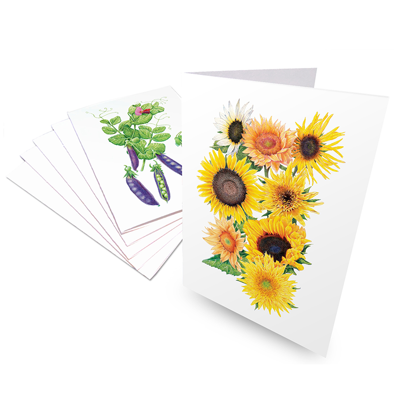 Botanical Art Notecard Set