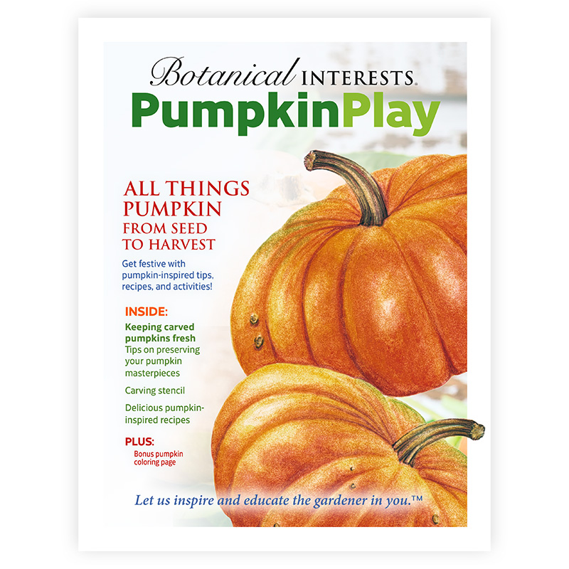 Pumpkin Activity Book
