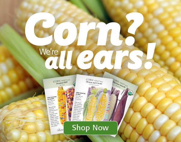 Mobile - Corn? We are all ears!