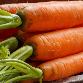 Carrot: Sow and Grow Guide