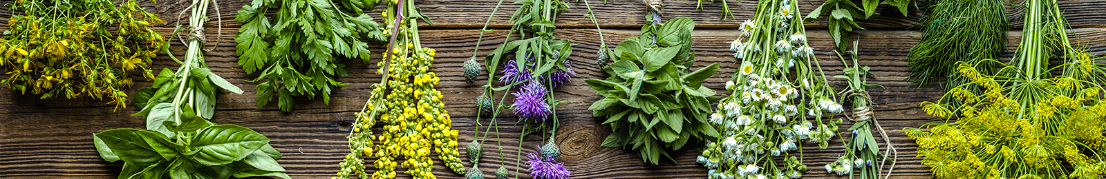 Herbs: How to Preserve