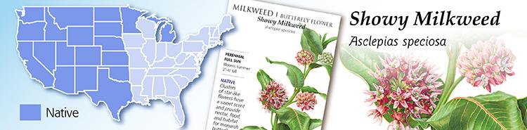 Showy Milkweed Map