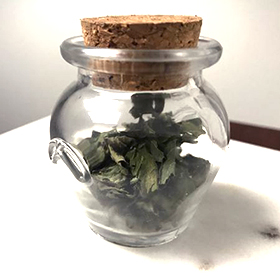 Tulsi Tea Recipe