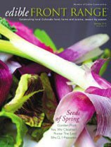 EFR Spring Cover