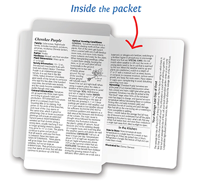 Inside of Packet