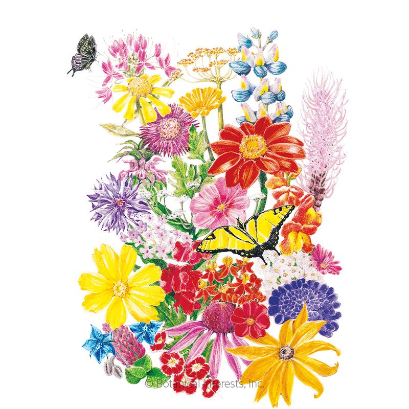 bring home the butterflies flower mix seeds   view all
