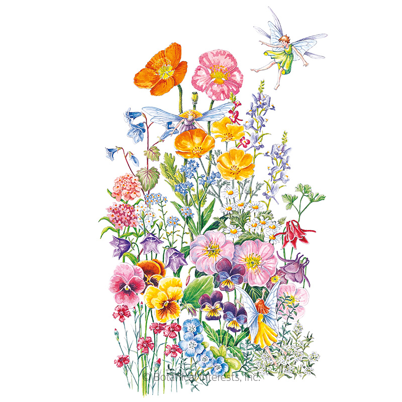 Fairy Meadow Flower Mix Seeds