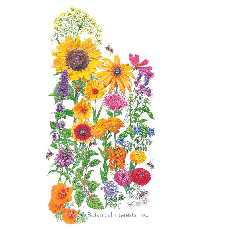 Bee Friends Garden Shaker 8000 Seeds 16 varieties 35 m² Summer Flower Seeds Mix